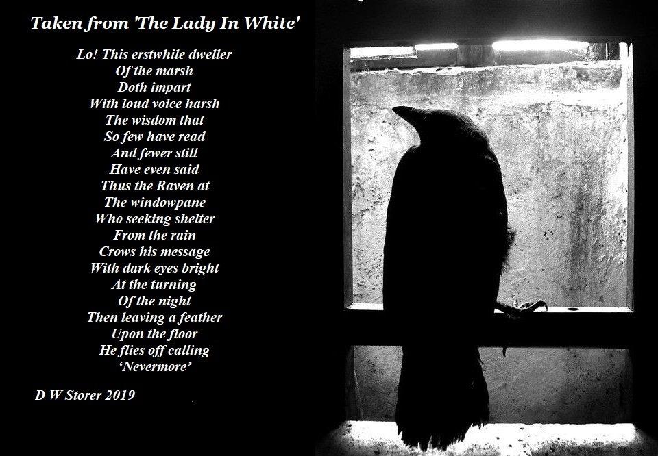 the raven835645903..jpg