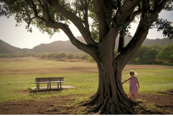 The image shows a young girl standing next to an old sprawling tree in a park. There is an empty bench in front of her.
